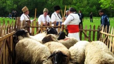 Традиции за Гергьовден - курбан, агне и дроб-сарма
