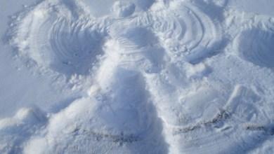 19 забавни неща, които ще ви стоплят през зимата