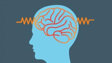 10 мита за епилепсията