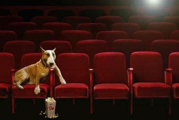 #OB10: Son 10 Yılın Oscar Adayı Olmamış En İyi 20 Filmi
