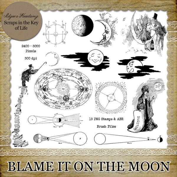 blame it on the moon by idgie