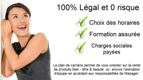 Statut-VDI-100-Legal-Jean-Marc-Fraiche