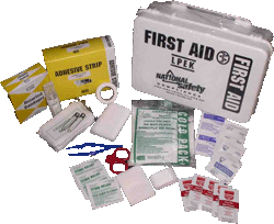 Economy First Aid Kit (up to 25 people)