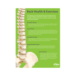 Back Health & Exercises Poster