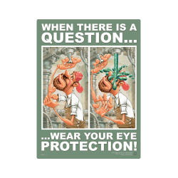 Wear Your Eye Protection Safety Poster