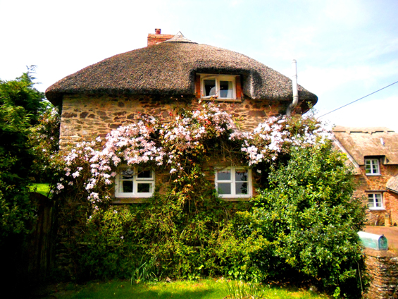1 Thatched brick cottage close up