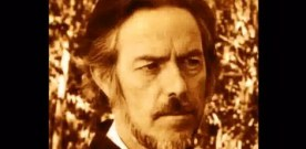 Alan Watts on Human Culture