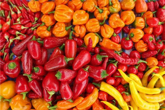 Various chilli