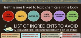 Our Bodies Constantly Surrounded by 84,000 Chemicals