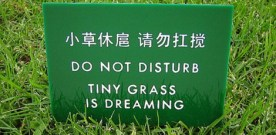 Meaningful Translations