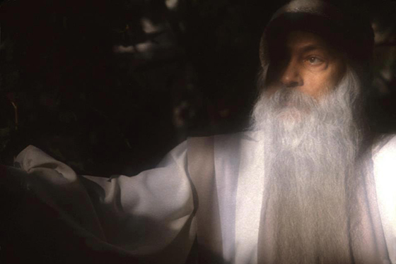 Osho in garden cr Anil Vora