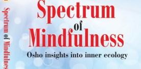 Spectrum of Mindfulness