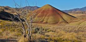 Impressions from the Painted Hills