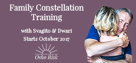 Family Constellation Training at Risk