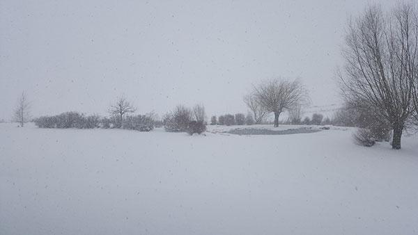 Snow in Stellshagen