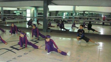 Ballet Clasico group classes preparacion fisica professional Instructor Maritza Rosales 11