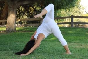 Yoga estiramiento reductiva meditacion relajacion posturas sanacion conexion cuerpo mente Instructora Maritza Rosales 041