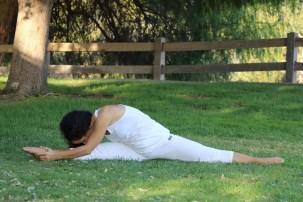 Yoga estiramiento reductiva meditacion relajacion posturas sanacion conexion cuerpo mente Instructora Maritza Rosales 044