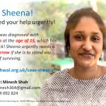Save Sheena!