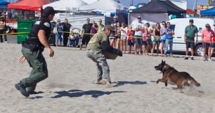 Oceanside PD K-9 Officer Sam Hay and David Greene put on a demonstration with OPD K-9 'Gonzo' at Harbor Days last September
