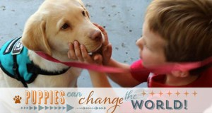Puppies Can Change the World