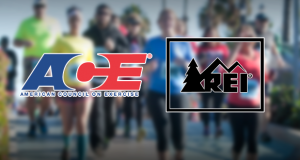ACE and REI logos