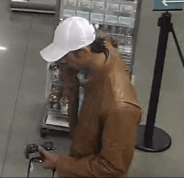 encinitas_theft_burglary02