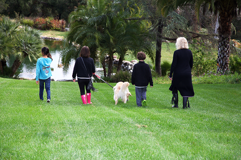 Autism Service Dog Families Gather For Autism Service Dog Day