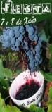Fin de semana de viño en Cenlle