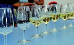 Promoción dos viños de Valdeorras na Coruña