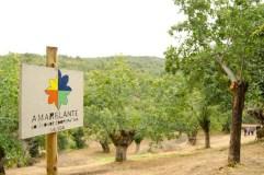 Cooperativa Amarelante de Manzaneda, nos premios galegos ao cooperativismo