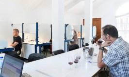 Os expertos valoran os viños da feira valdeorresa