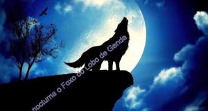 I Andaina nocturna ao Foxo do Lobo de Guende