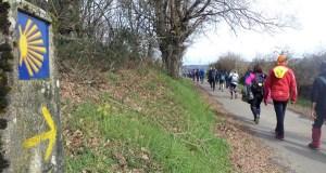 O Camiño de Inverno, presente nunha viaxe conmemorativa a Bélxica