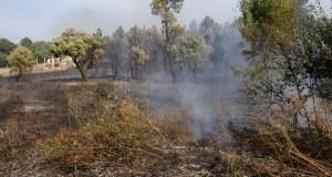 Medio Rural prohibe as queimas agrícolas e forestais