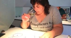 Os viños da XX Feira de Valdeorras, valorados polos expertos