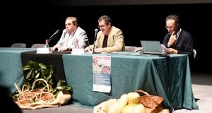 A problemática da praga da avespiña, nas xornadas sobre a castaña en Verín