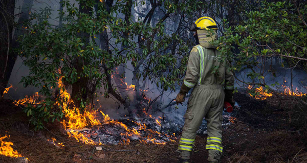 Incendio tamén en Valdegodos (Vilamartín)