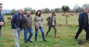 Visita da conselleira do Medio Rural a unha explotación gandeira de Montederramo