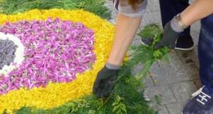 As alfombras florais engalanarán o casco antigo do Barco o 3 de xuño