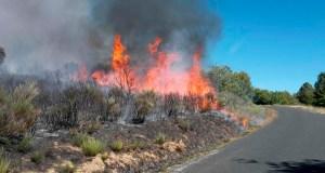 Vilariño de Conso e Viana do Bolo rexistraban na última década 380 incendios en 5 parroquias