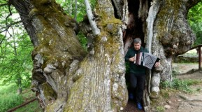 Kepa Junkera toca a trikitixa no interior do Castiñeiro de Pombariños (Manzaneda)