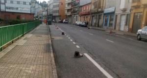 O luns 9 de xullo comezarán as obras de reforzo de firme en cinco estradas autonómicas de Valdeorras