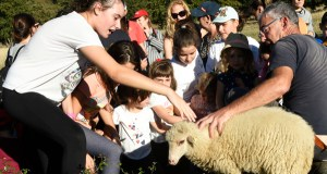 Comezan as visitas infantís á Granxa Escola A Capilla de Lentellais