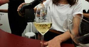 Os viños de 21 adegas valdeorresas promocionaranse en Madrid