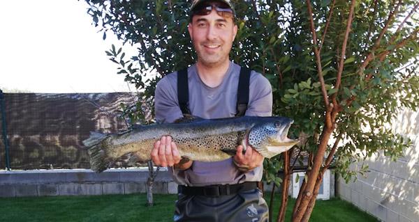 Unha troita de 3,3 quilos, pescada no río Sil en Quereño (Rubiá)