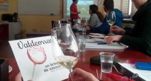 A D.O. Valdeorras promociona os seus viños e o seu territorio nun curso de sumillería en Salamanca