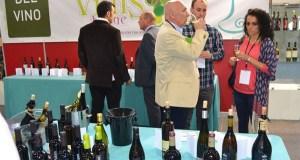 Vinis Terrae celebrará a súa oitava edición do 1 ao 2 de abril en Expourense
