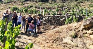 """Anna Vicens, sumiller catalá: """"En Valdeorras vexo moito futuro para os viños"""""""