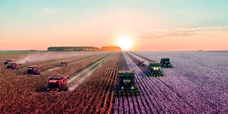 Os Melhores Investimentos - Ações da SLC Agrícola
